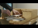 Architectural models unwrapped at Young Architects Program 2017 | AT THE MUSEUM