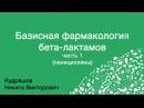 Базисная фармакология бета лактамов Часть 1
