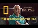 Невероятный доктор Пол Непослушное стадо