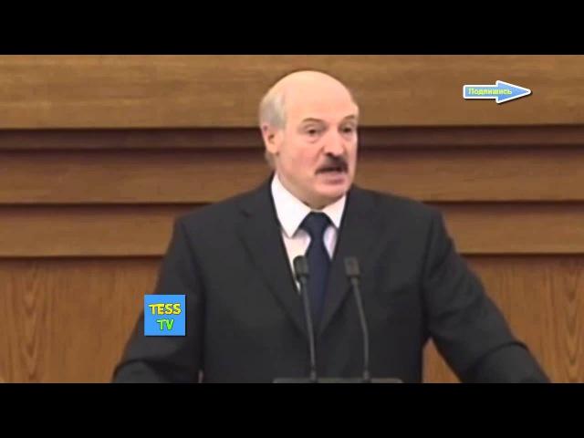 Лукашенко ну зачем ты на ночь вместе с этой бульбой жрешь мясо и ложишься спать что с тобой будет