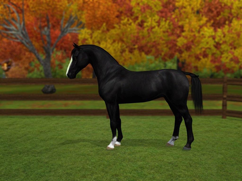 Регистрация лошадей в RHF 2 - Страница 3 YIZbwKUbrgc