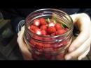Эльдар Богунов и Кролик Блэк кушают не известные ягоды