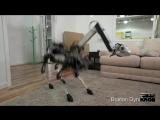Судьбинушка робота-собаки из BostonDynamics