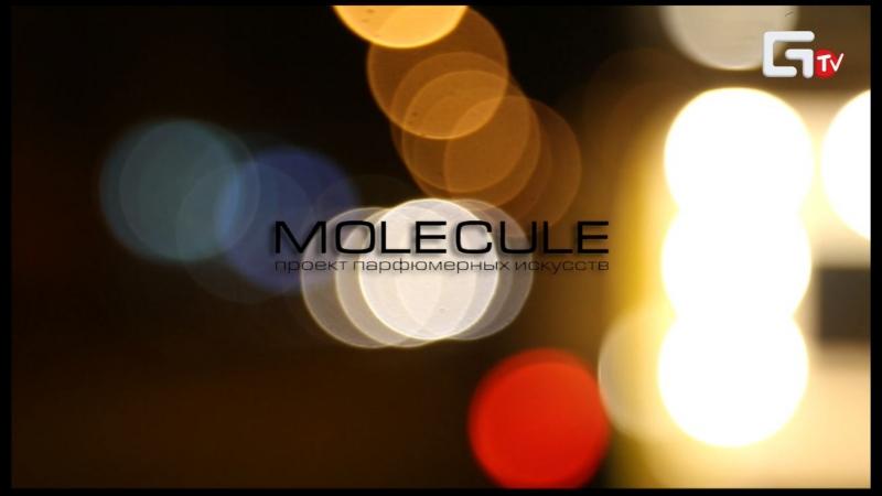 Niche Night в проекте парфюмерных искусств Molecule