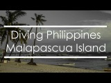 Diving Philippines  Malapascua Island  Part 1
