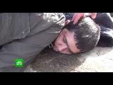 Задержание организатора теракта в питерском метро: видео