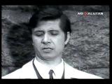 Виктор Вуячич - Туман