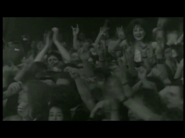 MOTÖRHEAD - Too Good To Be True (Lemmy Tribute Video)