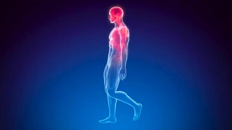 FULL RESTORE of BODY HEALING 10000Hz Brain Massage 40Hz SUPER Binaural Beats Ac
