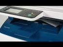 Xerox: новейшие принтеры и МФУ для дома и офиса