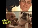 чужой 3 Alien 1992 пародия 2017 kino remix приколы с собаками чужой завет