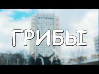 """Пародия от Студенческого Совета ИСА МГСУ  на клип """"Грибы - Тает лёд"""""""