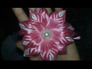 Flor Maravilha.😍😍 leia a descrição