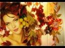 Вот и осень приближается к закату. Красивые песни - Андрей Каргин - Ноябрь лжец .