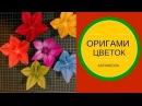 Оригами цветок КАРАМБОЛА Origami flower CARAMBOLA