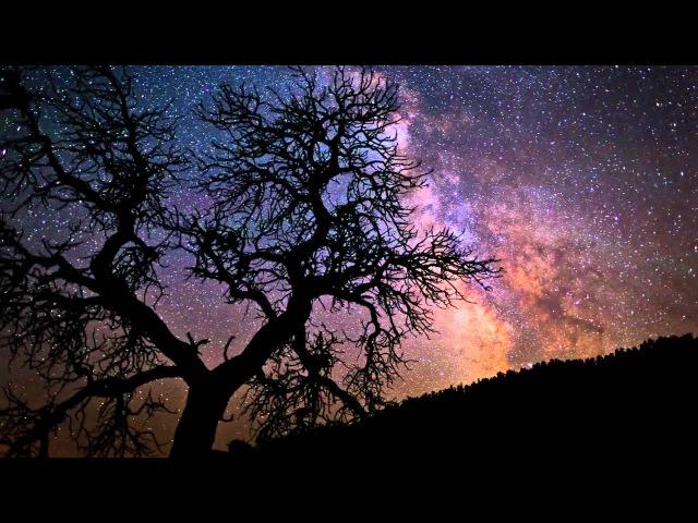 Wild Wyoming, A Summer of Sunsets Dark Skies