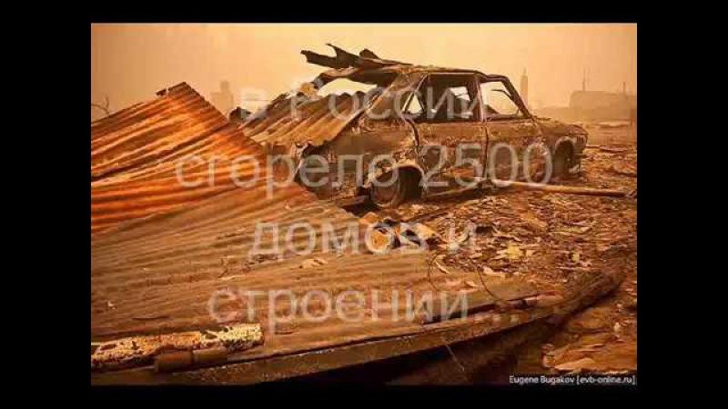 Россия в огне Смог засуха и пожары 2010 года