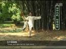 Chen style 24 form Tai Chi Fan 11~18