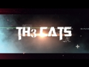 Th3 CATS - Yarovoe ¦ Bass Fest 2K16 ¦ Official Aftermovie