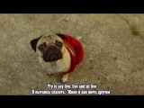 Fall Out Boy - Irresistible (Starring Doug The Pug) ft. Demi Lovato (русские субтитры)
