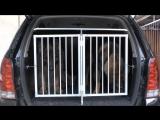 Изготавливаем боксы (клетки) разных размеров и конфигураций. Например под багажник вашего автомобиля.