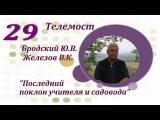 29. Чернослив и виноград - секреты выращивания!