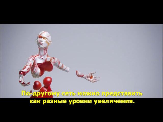 Алан Уотс Интервалы