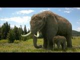 Documentary - Ice Age Giants 3of3 Last of the Giants