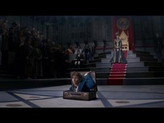 Кто нового Гарри Поттера ждет? Выглядит эпичненько! 😊