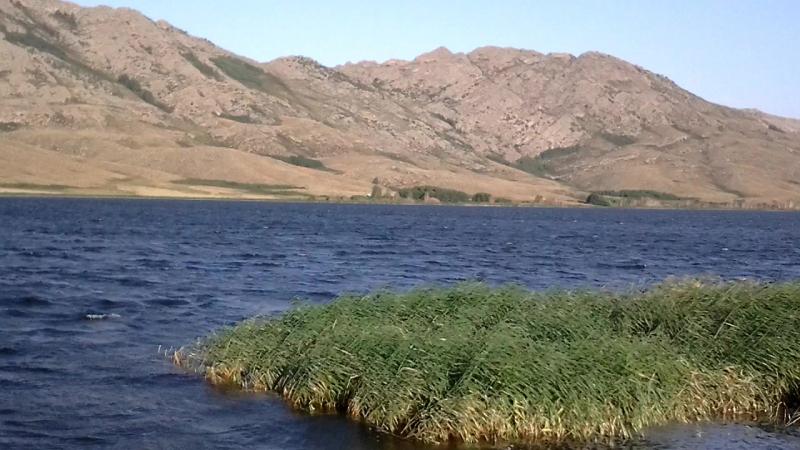 На волчьей територии. Озеро. Свежее утро, сильный ветер