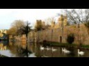 Swans on the Moat - Bishop's Palace - Wells, Somerset
