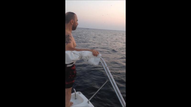 Salim Tekne Atlayış