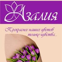 azaliya_svety