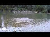 рыбалка на тисе