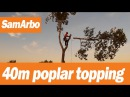 Красивое видео работы арбориста Арбористика SamArbo