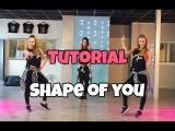 Tutorial - Shape of You - Ed Sheeran - Saskia's Dansschool - Easy Fitness Dance