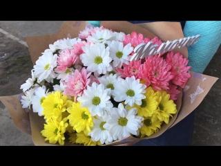 Букет 11 хризантем Маме