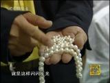 Жемчужницы Хэ Бан Чжэньчжу. Жемчужные Фермы Чжэньчжу Янчжи Чан и Пресноводный Жемчуг Даньшуй Чжэньчжу.