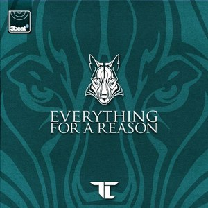 TC альбом Everything For A Reason