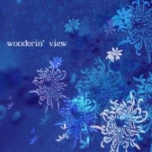 Nomak альбом Wonderin' View