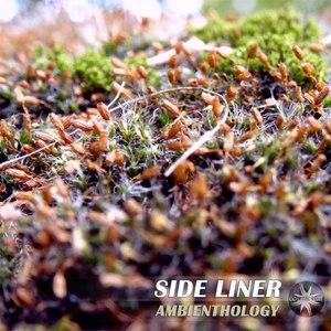 Side Liner альбом Ambienthology