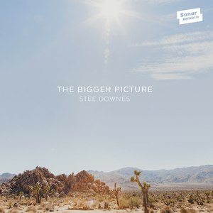 Stee Downes альбом The Bigger Picture