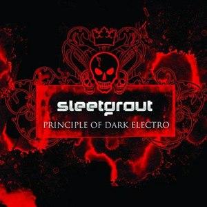 Sleetgrout альбом Principle Of Dark Electro