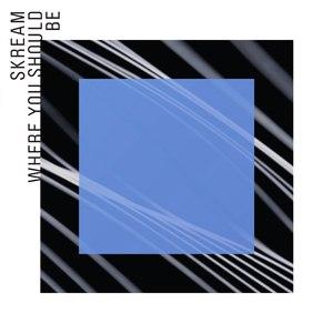 Skream альбом Where You Should Be feat. Sam Frank