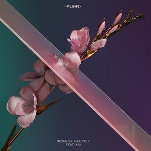 Flume альбом Never Be Like You