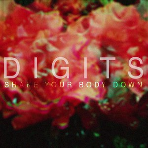 Digits альбом Shake Your Body Down