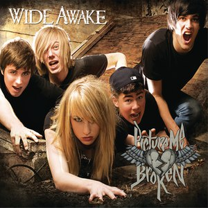 Picture Me Broken альбом Wide Awake