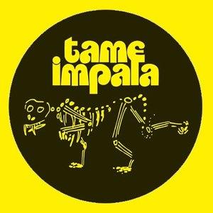 Tame Impala альбом Demos