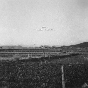 Flica альбом Telepathy Dreams
