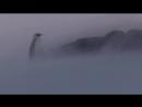 BBC Пингвины Шпион в стае 1 серия